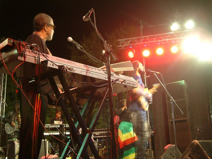 Wailers, Reggae Vibes
